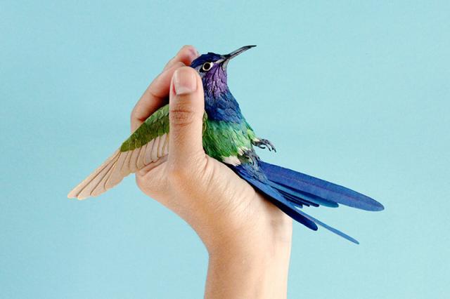 A Little Birdie Told Us