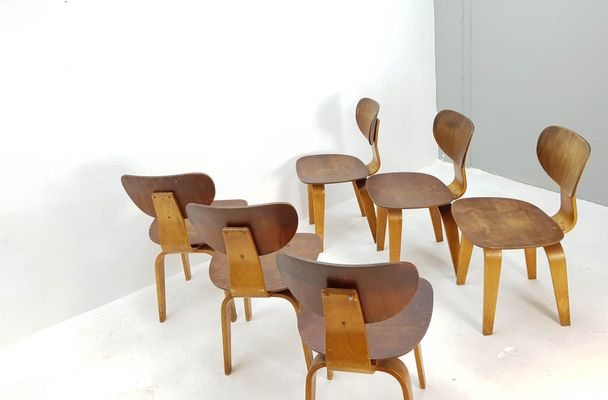 dining chair sb furniture. plywood dining chairs sb02 by cees braakman for pastoe 1955 set chair sb furniture