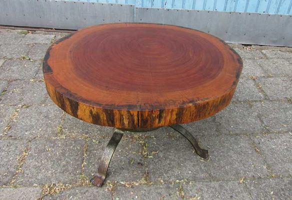 Vintage Tree Trunk Coffee Table, The Netherlands, 1960s 4