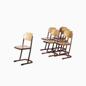 Dutch School Chairs, 1950s, Set of 6