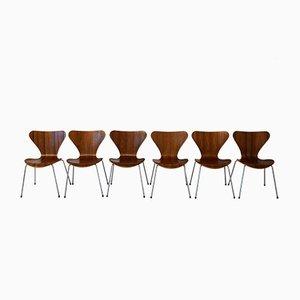 Dänische Modell 3107 Teak Stühle von Arne Jacobsen für Fritz Hansen, 1960er, 6er Set