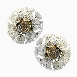 Floral Wall Lamps from VEB Kristallleuchte, 1950s, Set of 2