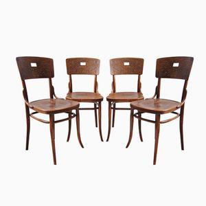 Österreichische Bistro Stühle aus Bugholz von Michael Thonet für Thonet, 1910er, 4er Set