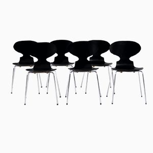 3100 Chairs by Arne Jacobsen for Fritz Hansen, 1971, Set of 6
