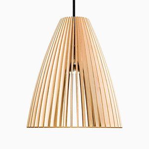 TEIA Birch Pendant Light by Paul Girardet for Iumi