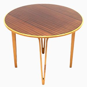 Swedish Elm and Rosewood Side Table