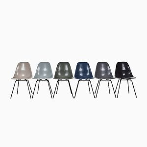 DSX Chairs by Charles and Ray Eames for Herman Miller, Set of 6