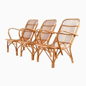 Vintage Bamboo Garden Chairs, 1950s, Set of 3