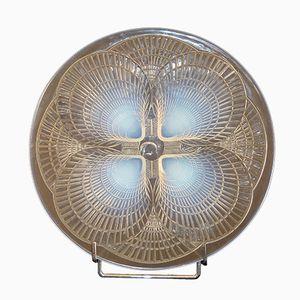 Französischer Muschel Teller aus Glas von Rene Lalique, 1928