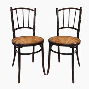 Bentwood & Cane Side Chairs from Thonet, 1900s, Set of 2
