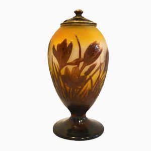 Lampe de Table et Veilleuse Art Déco Nouveau par Émile Gallé, 1910