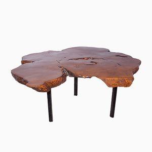 Elm Tree Trunk Coffee Table