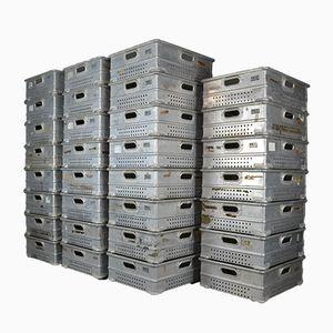 Stapelbare Industrielle Aluminium Tabletts, 31er Set
