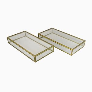 Museum Display Cabinets with Brass Hinged Lids, Set of 2