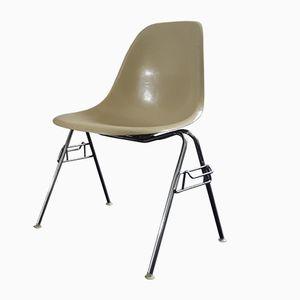 Vintage DSS Glasfaser Schalen Sessel von Charles & Ray Eames für Herman Miller
