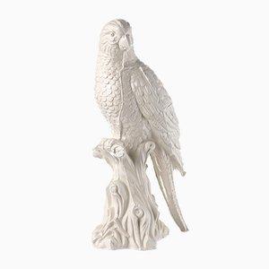 Perroquet Verni en Céramique par Botteganove