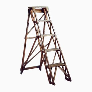 British Wooden Library Ladder