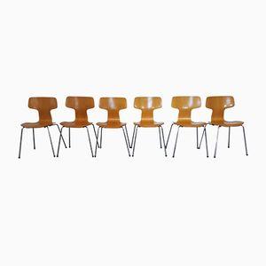 3103 Buchenholz T-Stühle von Arne Jacobsen für Fritz Hansen, 1981, 6er Set