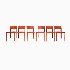 Terrakotta Lederstühle von Matteo Grassi, 1970er, 6er Set