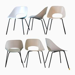 Tulip Chairs by Pierre Guariche for Steiner, 1954, Set of 6