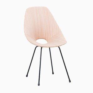 Italienischer Medea Stuhl von Vittorio Nobili für Fratelli Tagliabue, 1955