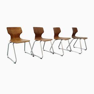 Vintage Chairs by Elmar Flötotto for Flötotto, 1970s, Set of 4