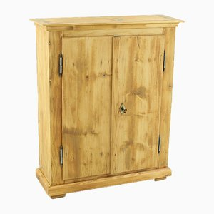 Antique Spruce and Fir Cupboard, 1860s