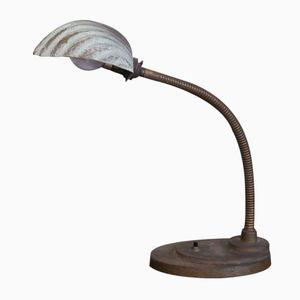 Shell Desk Lamp, 1920s