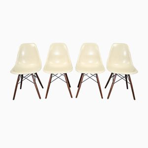Vintage Parchment DSW Chairs by Charles and Ray Eames for Herman Miller, 1960s, Set of 4