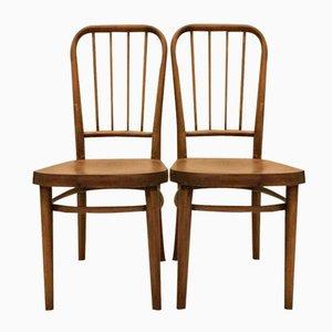 Vintage Modell A 63 Stühle von Josef Frank für Thonet, 2er Set
