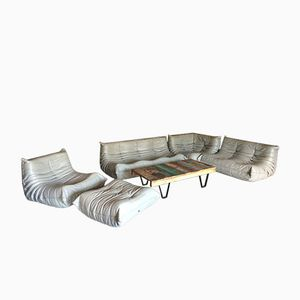 Grey Leather Togo Sofa Set by Michel Ducaroy for Ligne Roset, 1970s, Set of 5