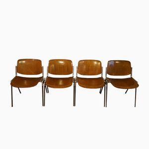 DSC Axis 106 Stühle von Giancarlo Piretti für Castelli, 1960er, 4er Set
