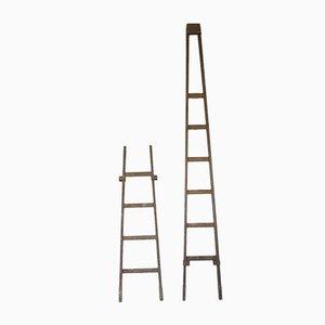Vintage Brown Window Cleaner's Ladder