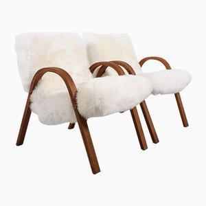Französische Schafsfell Stühle aus Biegeholz von Steiner, 1948, 2er Set