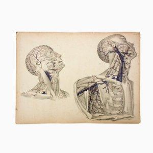 Affiche d'Ecole par M.J. Weber, 1830