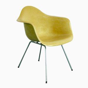 Ockerfarbener Mid-Century LAX Armlehnstuhl von Charles & Ray Eames für Herman Miller