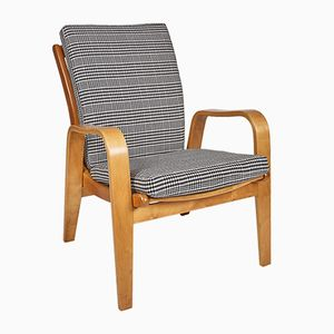 Mid-Century Model FB06 Armchair by Cees Braakman for UMS Pastoe