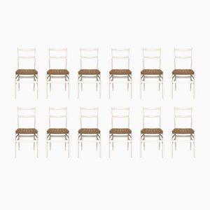 Leggera Nr. 646 Stühle von Gio Ponti für Cassina, 1952, 12er Set
