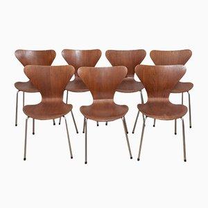 Modell 3107 Teak & Schichtholz Ant Stühle von Arne Jacobsen für Fritz Hansen, 1960er, 7er Set