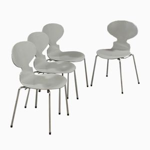 Graue 3101 Stühle von Arne Jacobsen für Fritz Hansen, 1988, 4er Set