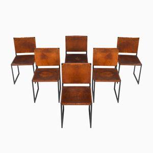 Mid-Century Cognacfarbene Sattelleder Esszimmerstühle, 1950er, 6er Set