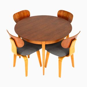 TB05/SB02 Dining Set by Cees Braakman for Pastoe, 1950s