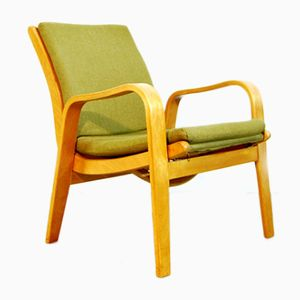 Dutch FB06 Easy Armchair by Cees Braakman for UMS Pastoe, 1950s