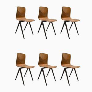 Chaises d'Ecole Industrielle S22 Marron Foncé de Galvanitas et Pagholz, 1967, Set de 6