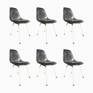 Vintage Blue Chairs by Charles & Ray Eames for Herman Miller, Set of 6