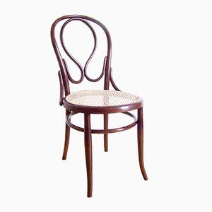 Wiener Modell Nr. 20 Stuhl von D.G. Fischel, 1900er