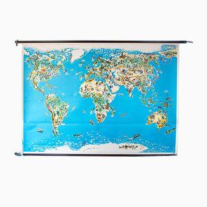 Carte du Monde Animaux, 1964