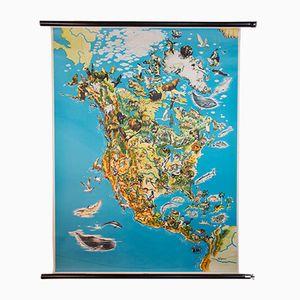 Tiere Nordamerikas Weltkarte, 1964