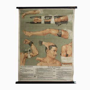 Erste Hilfe Wandtafel von Max Eschner für F. E. Wachsmuth, 1899