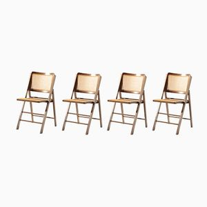 Folding Cane Chairs, 1950s, Set of 4